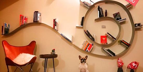 libreria-cat